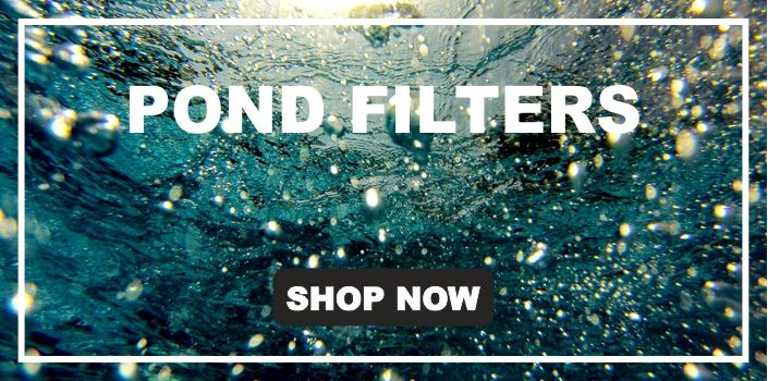 Pond Filters and Filtration Systems from Isle of Ely Koi, Cambridgeshire